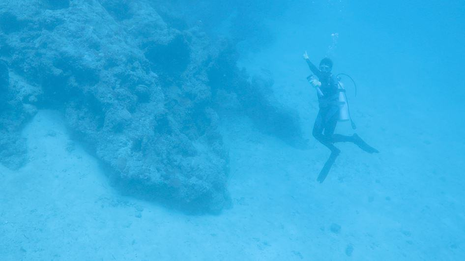 A dark coral shape in the blue underwater murk with a diver in the foreground
