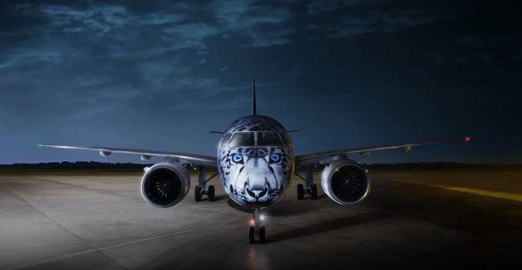The face of a snow leopard on the nose of an airliner, facing the camera, on the tramac, in dark evening light
