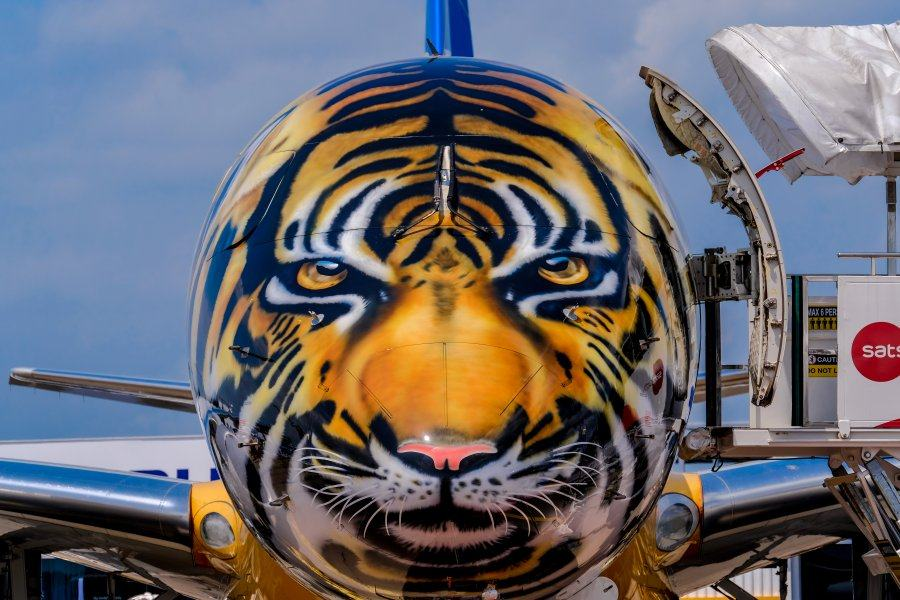 A tiger face on an airliner