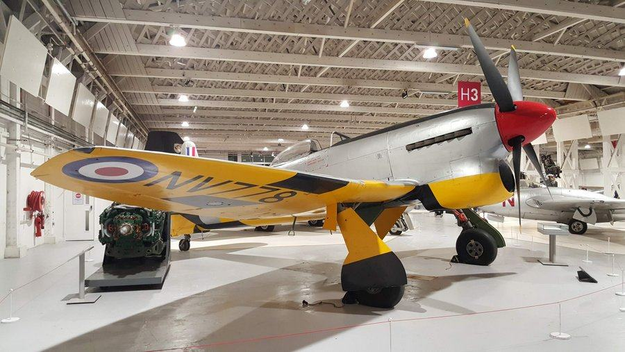 Large, powerful looking, single engined propeller fighter with silver body and bright yellow undersides.