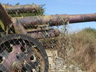Rusty howitzer among bushes with a camouflage net