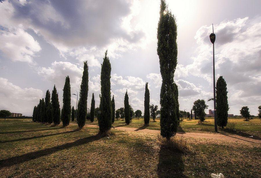 Centocelle Park, Rome
