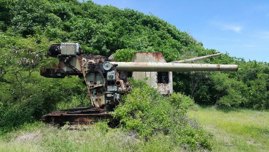 Two naval guns rusting under the wooded cliffs