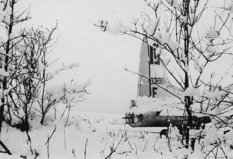 Snow covered trees and the tail of a B17 covered in deep snow. Black & White photo