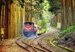A red train moves through a clearing in the woods